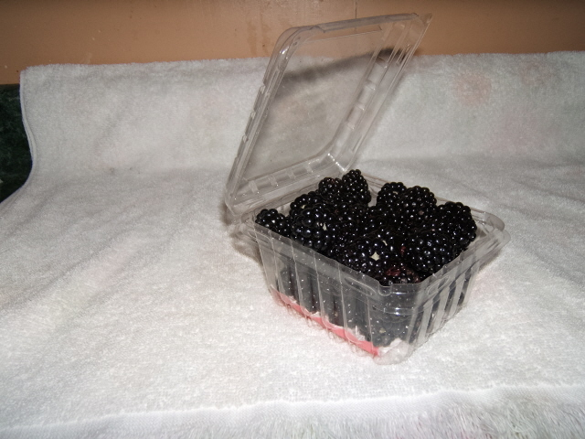 Blackberries packaged for sale