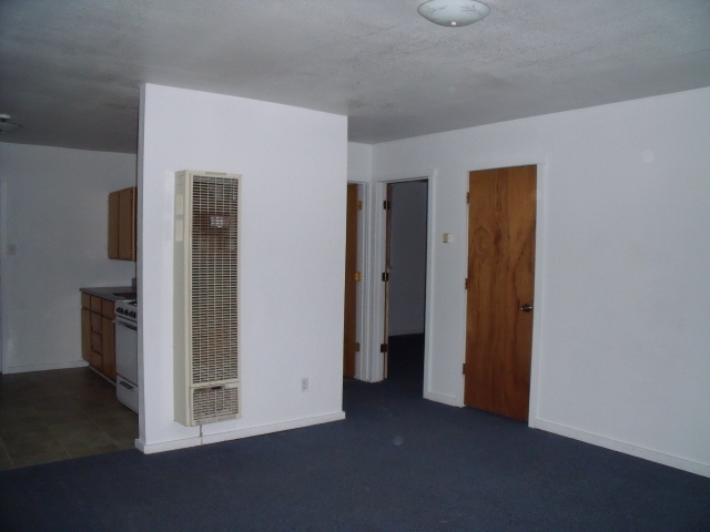This Shows The Living Room Of Apt 2 Taken From East Side With Front Door Behind Camera Here You See Wall Furnace Which